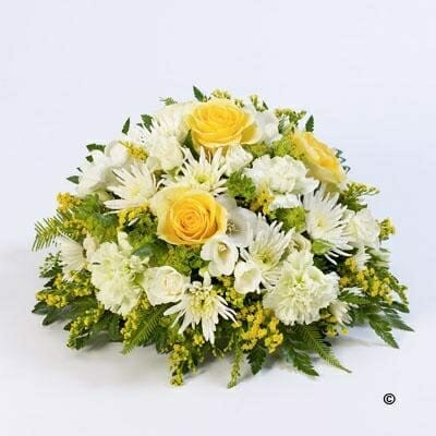 20141051 classic posy yellow and white