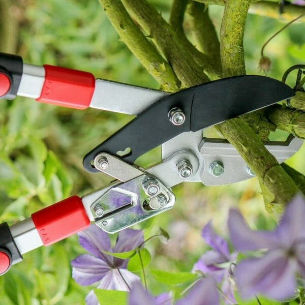 Pruners, Shears & Loopers